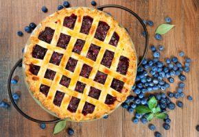international blueberry pie day